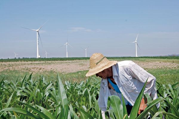 Agro-Allied Industrialization
